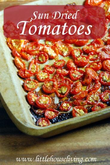 14 Fresh Tomato Recipes Youll Love