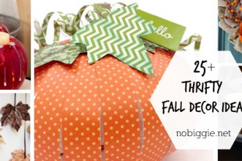 25+ Thrifty Fall Decor Ideas