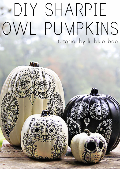 DIY Sharpie Owl Pumpkins | 25+ no-carve pumpkin ideas