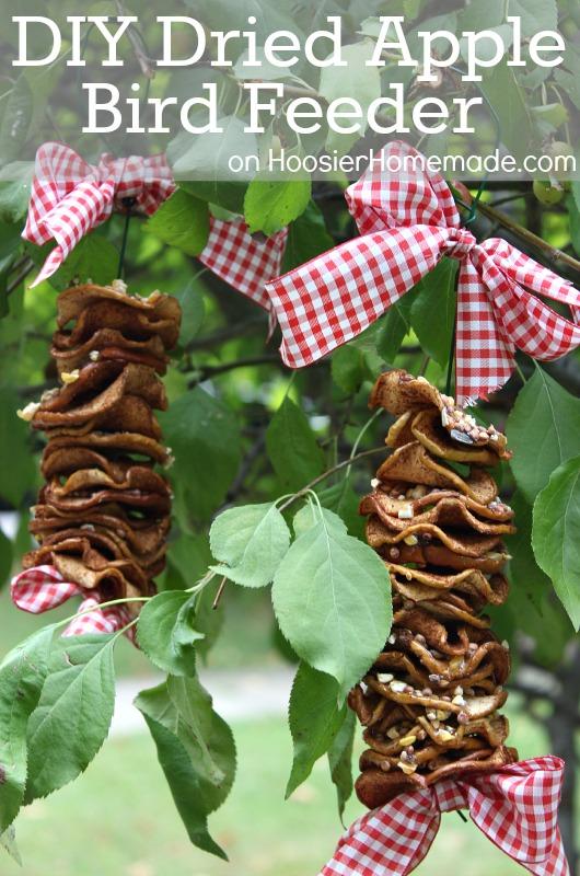 DIY dried apple bird feeder - 25+apple projects and kids crafts - NoBiggie.net