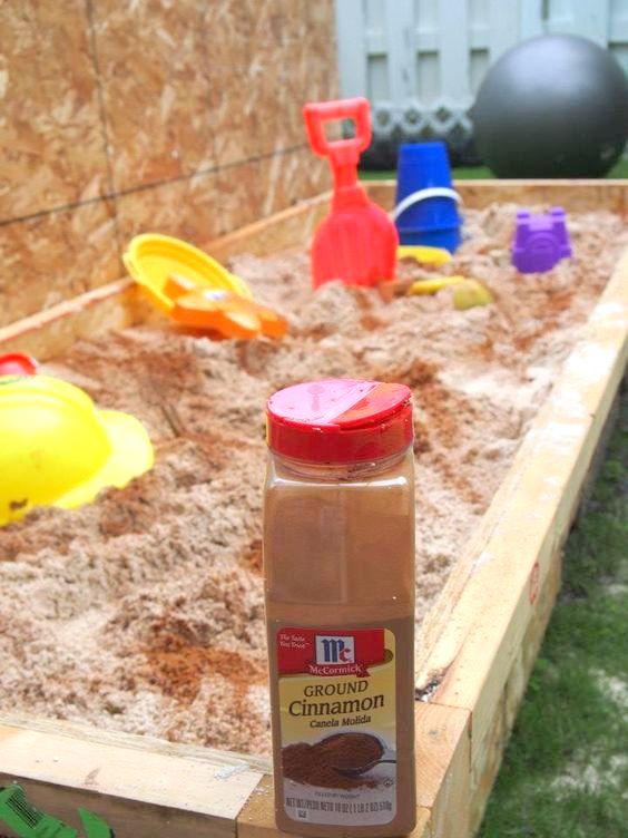 Sprinkle cinnamon in the sandbox to keep the bugs away | 25+ cleaning hacks