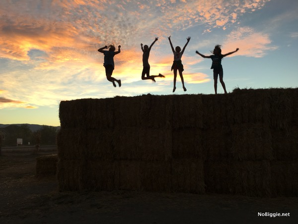 silhouette jumping picture