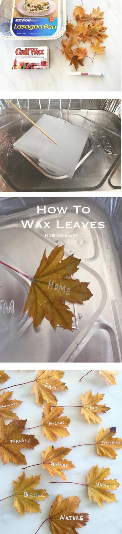 How to wax real leaves for a thankful tree | NoBiggie.net