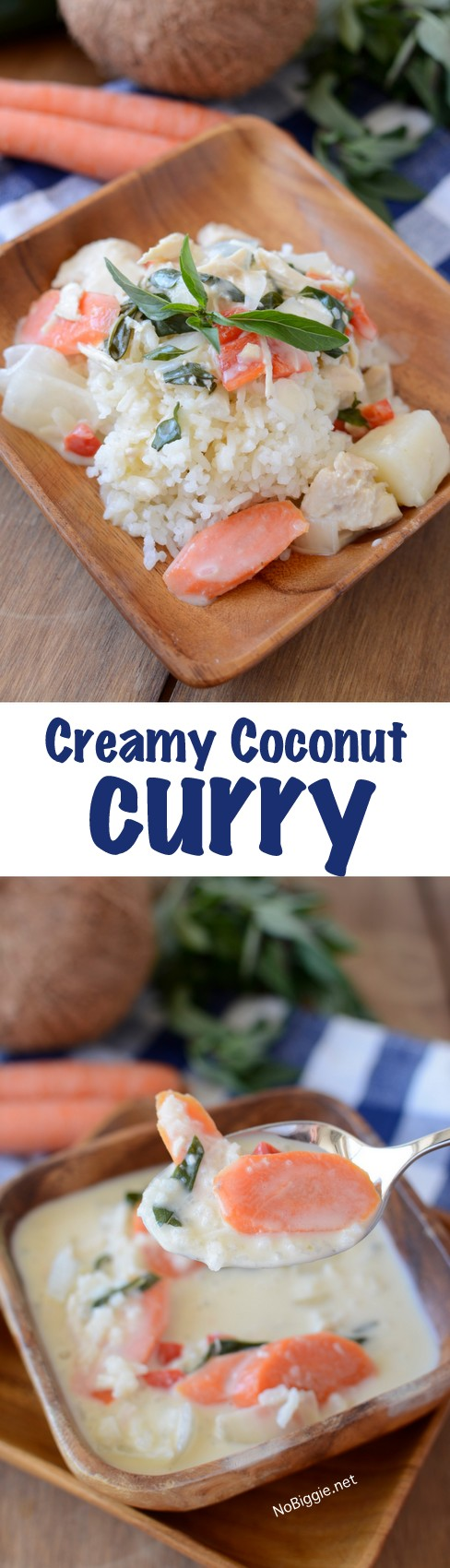 creamy coconut curry this recipe is just like eating out and so easy! | NoBiggie.net