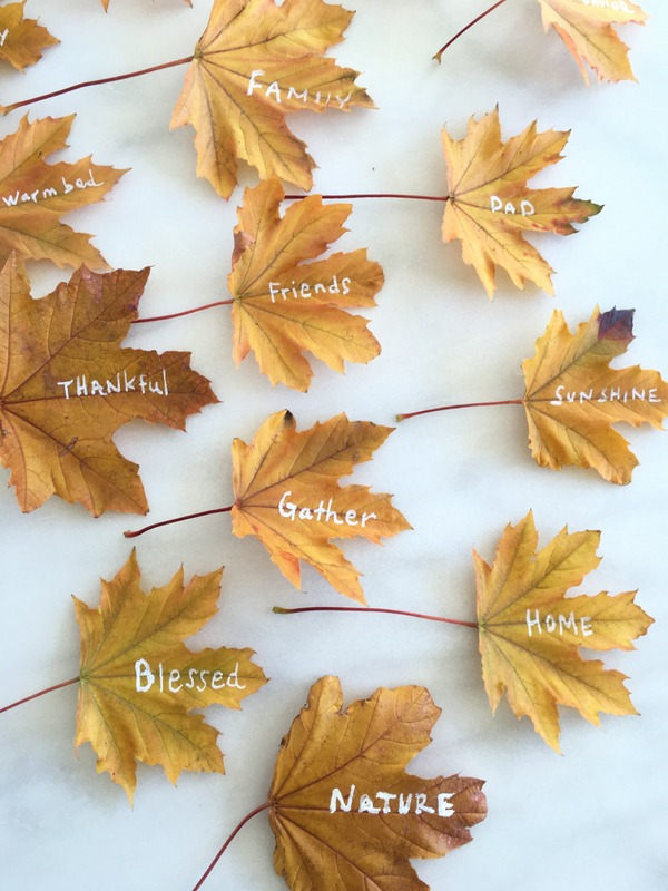 real leaf thankful tree | NoBiggie.net