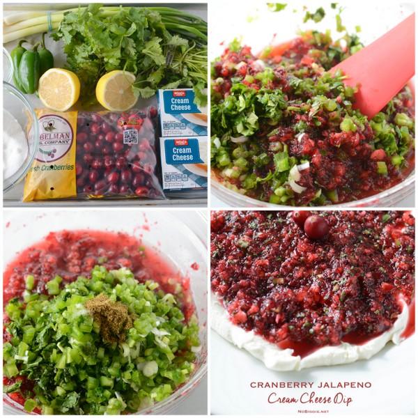 Cranberry Jalapeño salsa dip recipe | NoBiggie.net