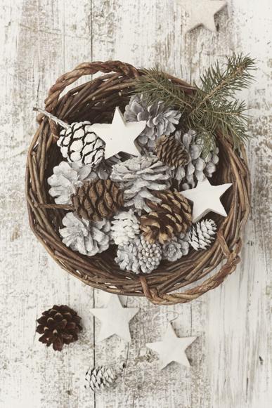 Pinecones in a basket