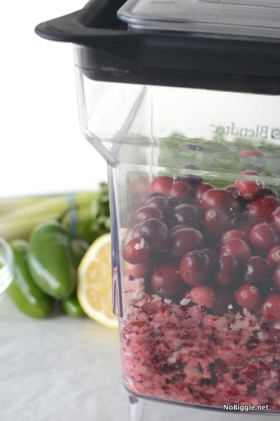 blend the cranberries | NoBiggie.net
