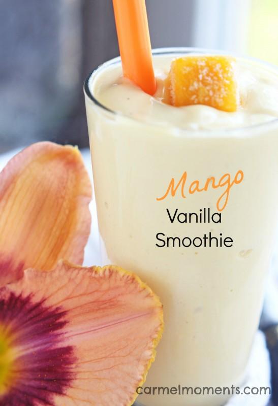 http://www.nobiggie.net/wp-content/uploads/2016/01/Mango-Vanilla-Smoothie.jpg