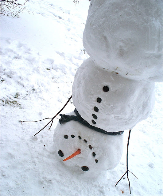 25+ Creative Snow Creations