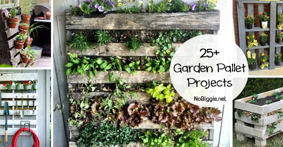 25+ garden projects with pallets | NoBiggie.net