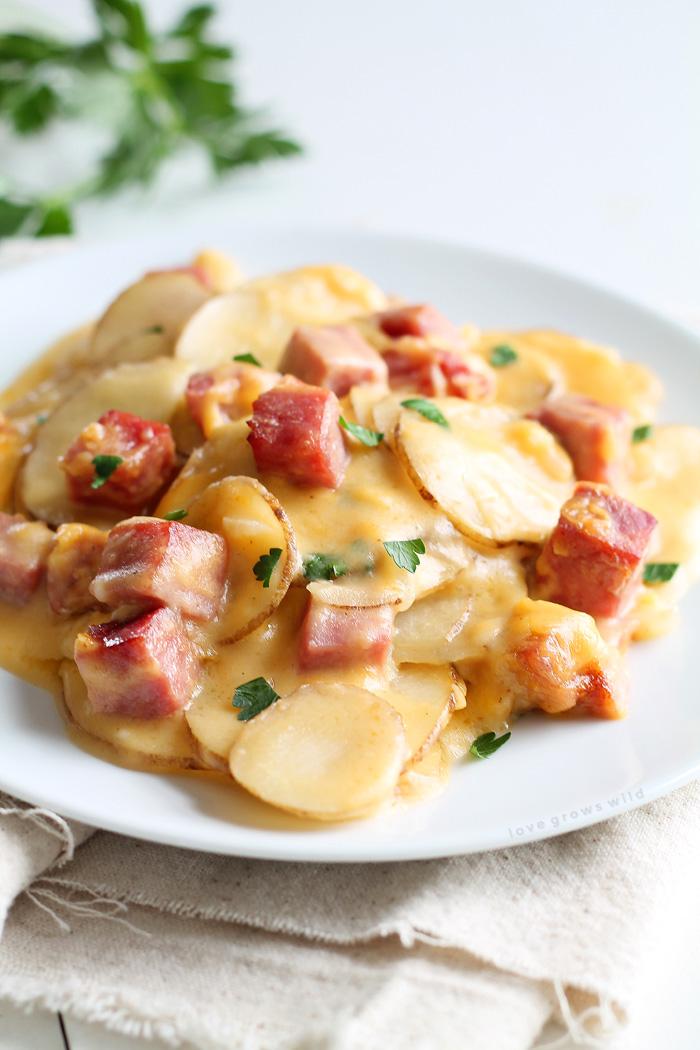 25 Leftover Ham Recipes Nobiggie
