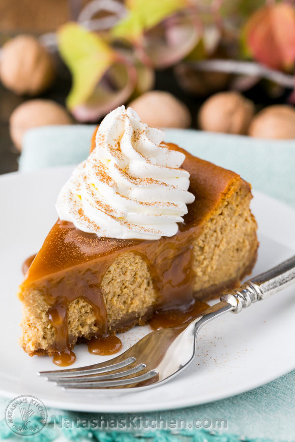 25+ Cheesecake Recipes
