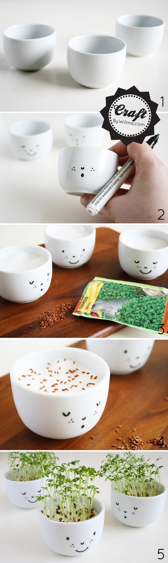 http://www.nobiggie.net/wp-content/uploads/2016/02/cute-cress-cups-with-a-face-diy.jpg
