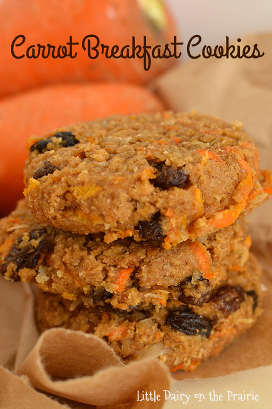 Carrot Breakfast Cookies | 25+ Quick/On The Go Breakfast Ideas