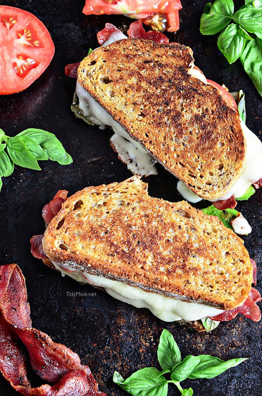 Turkey Bacon & Avocado Grilled Cheese | 25+ Grilled Cheese Recipes
