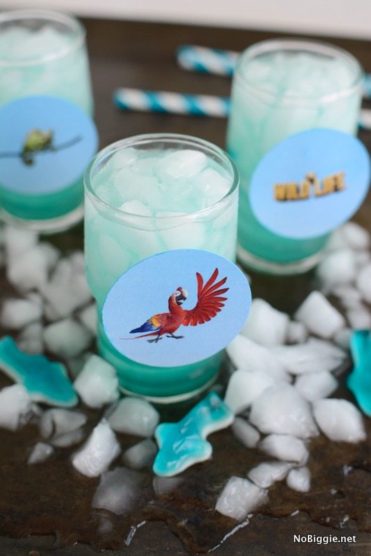The Wild Life party punch | NoBiggie/net