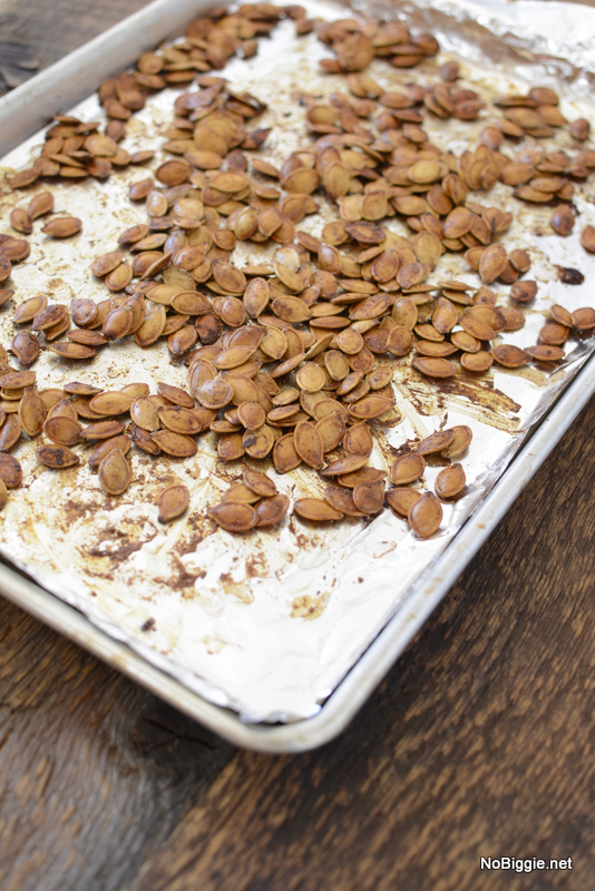 toasted pumpkin seeds | NoBiggie.net