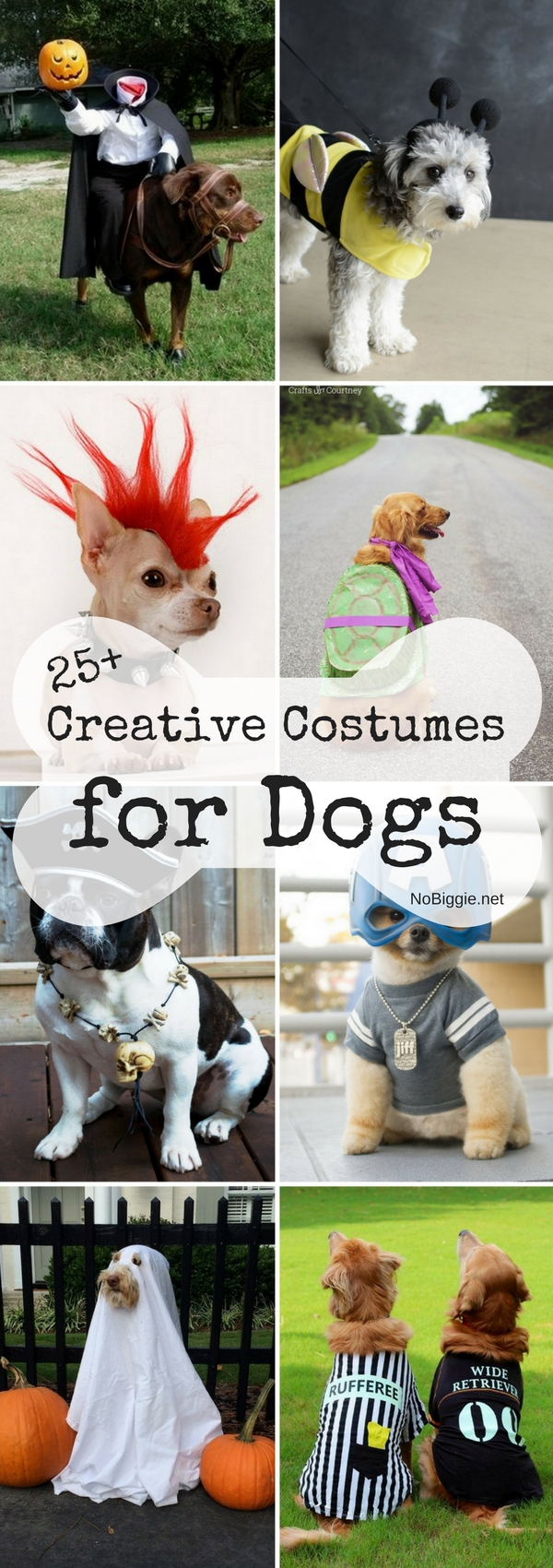 25+ Creative Costumes for Dogs | NoBiggie.net