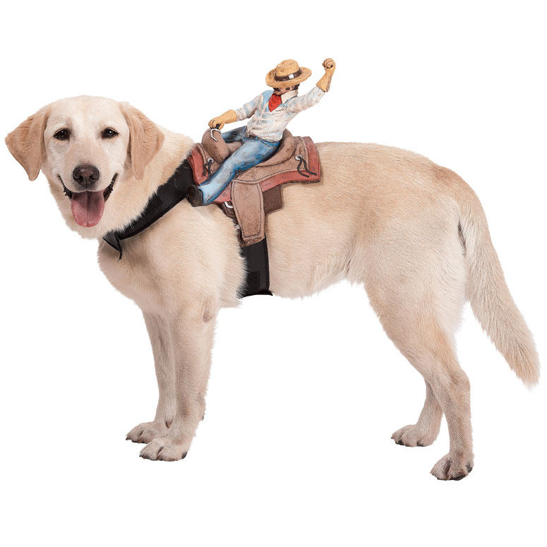 Dog Riders Pet Costume | 25+ Creative Costumes for Dogs