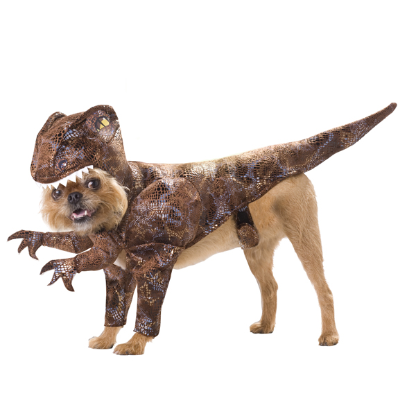 Raptor Dog Costume | 25+ Creative Costumes for Dogs