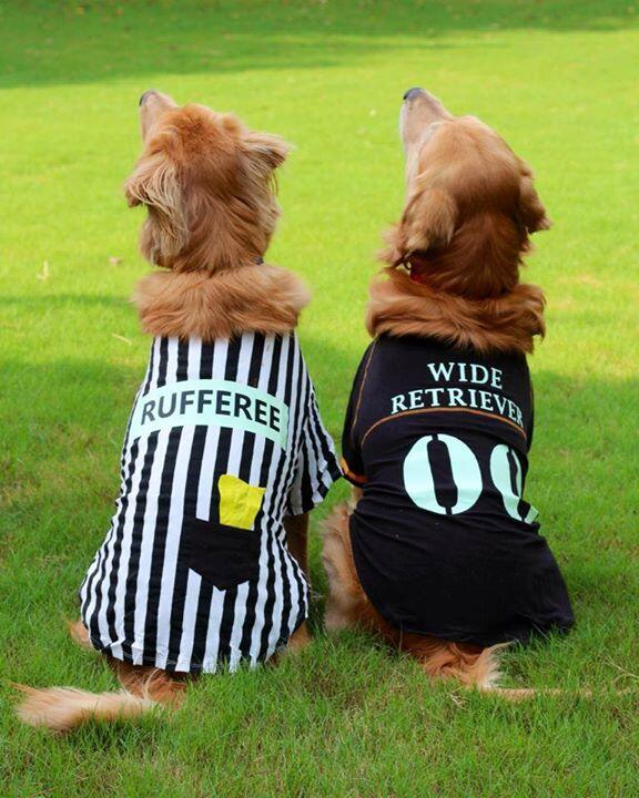 Refferee and football player | 25+ Creative Costumes for Dogs