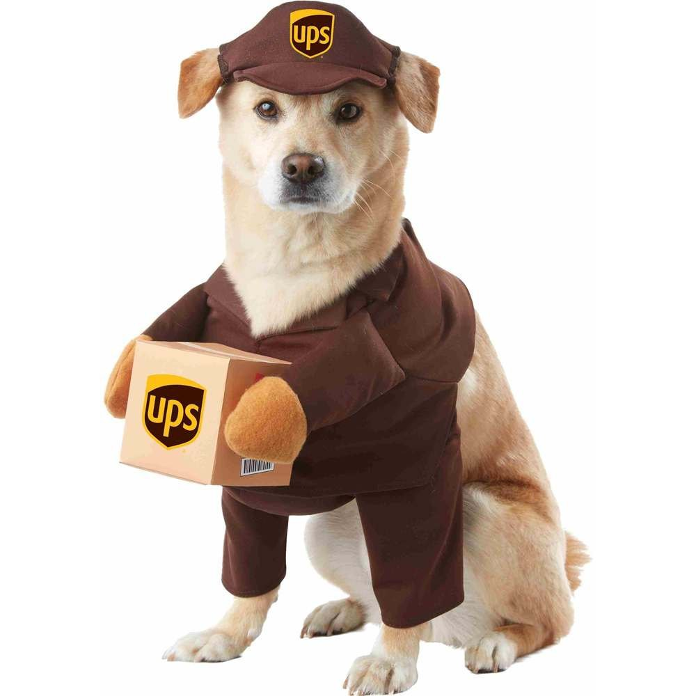 UPS Pal | 25+ Creative Costumes for Dogs