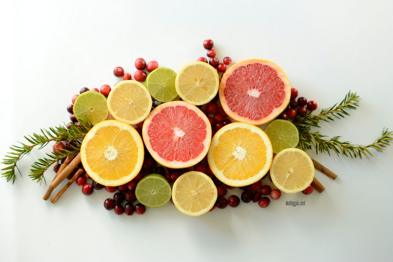 holiday citrus fruit | NoBiggie.net