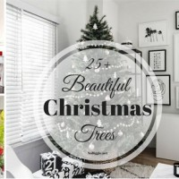 25+ Beautiful Christmas Trees