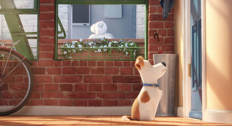 Max from The Secret Life of Pets