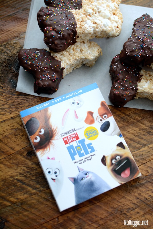 The Secret Life of Pets on dvd | NoBiggie.net