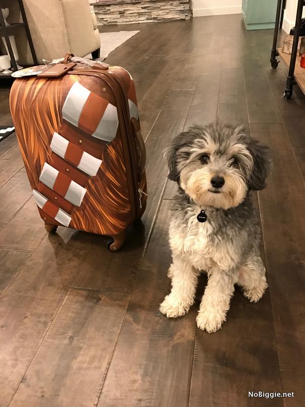 Chewi Luggage