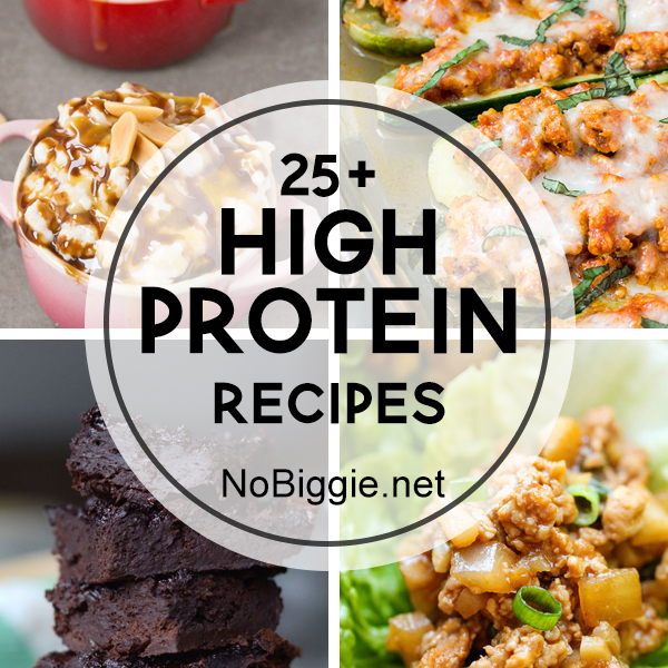 25+ High Protein Recipe - NoBiggie.net