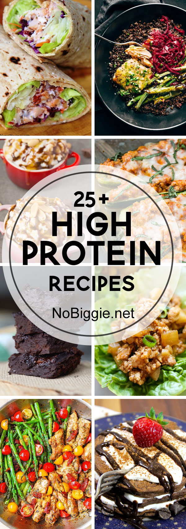 25 High Protein Recipes Nobiggie