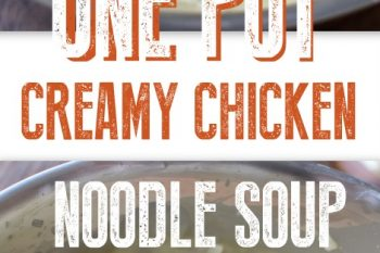 One Pot Creamy Chicken Noodle Soup