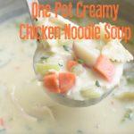One Pot Creamy Chicken Noodle Soup video | NoBiggie.net