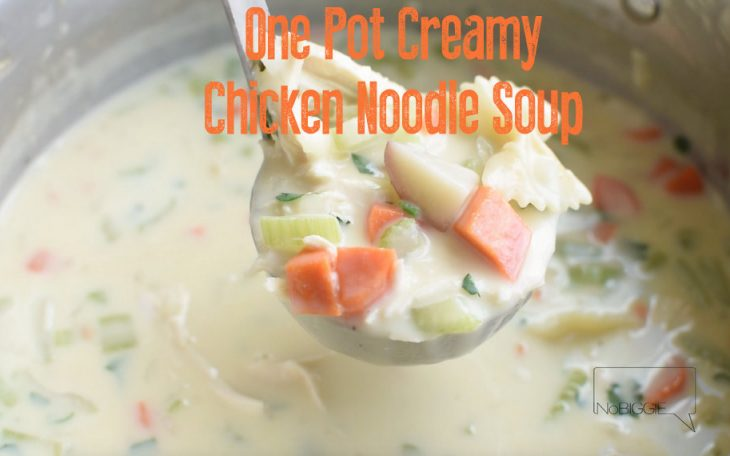 One Pot Creamy Chicken Noodle Soup video | NoBiggie.net