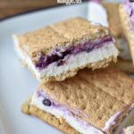 Blueberry Cheesecake Frozen Yogurt Ice cream Sandwiches | NoBiggie.net