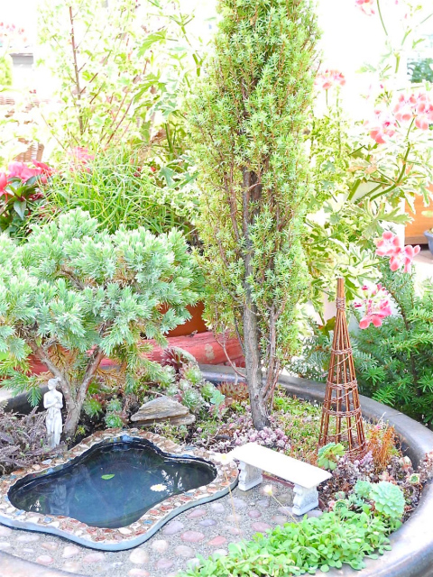 Photographing Your Miniature Garden | 25+ Fabulous Fairy Garden