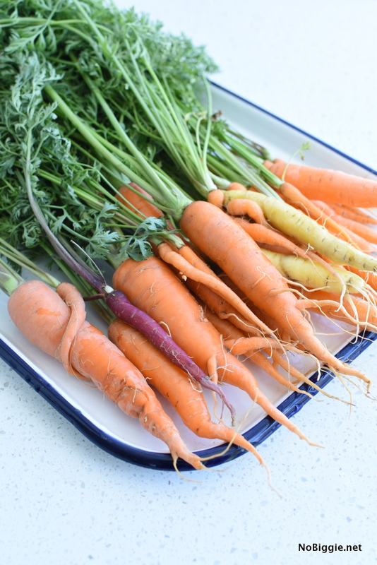 Fresh from the Garden carrots