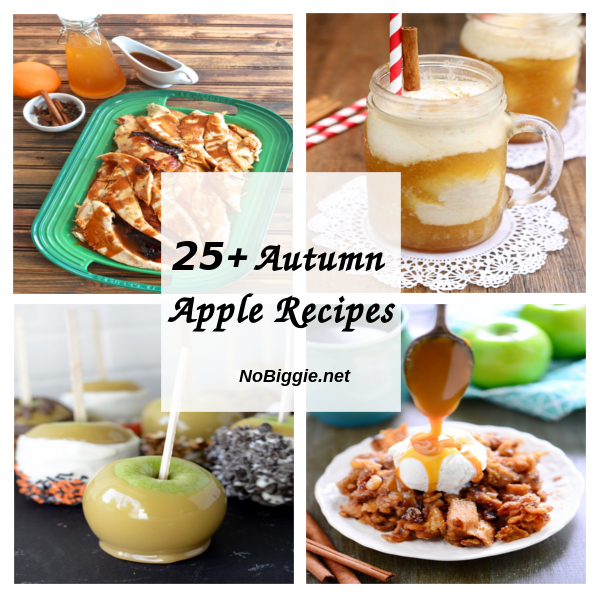 25+ Autumn Apple Recipes | NoBiggie.net