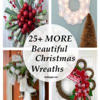 25+ More Beautiful Christmas Wreaths