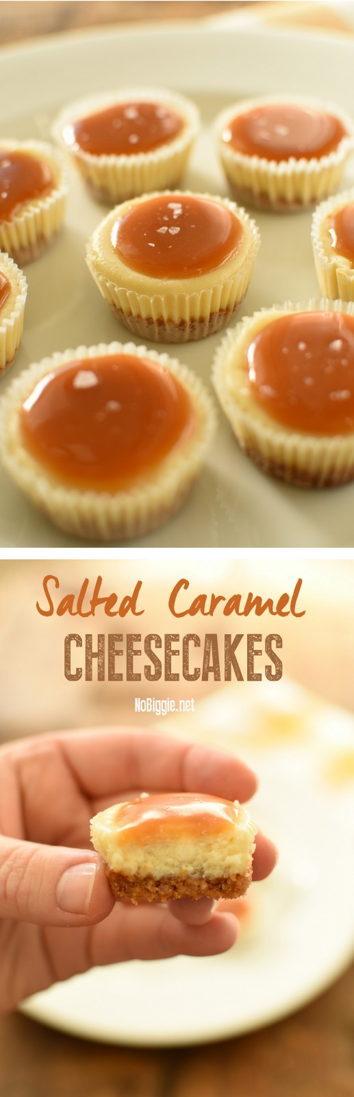 Salted Caramel Cheesecakes - mini cheesecakes that are perfect for feeding a crowd! #minidesserts #cheesecake #saltedcaramel #saltedcaramelcheesecake #cheesecakerecipes