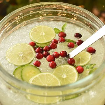 cucumber limeade punch with cranberries | NoBiggie.net