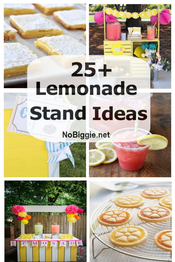 25+ Lemonade Stand Ideas | NoBiggie.net