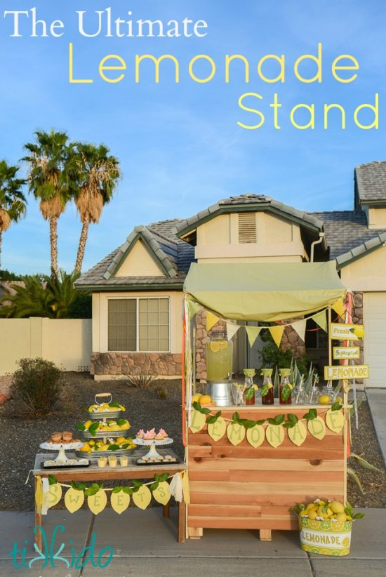 Ultimate Lemonade Stand | 25+ Lemonade Stand Ideas