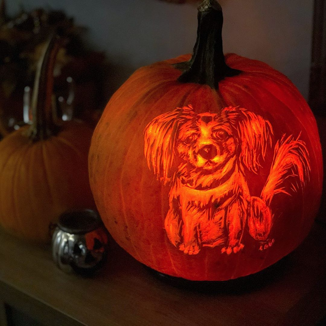 Doggy Carved Pumpkin | 25+ Creative Carved Pumpkins
