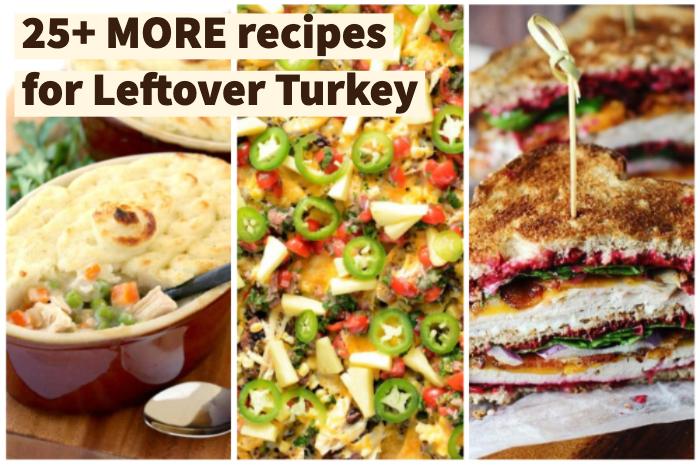 MORE leftover turkey recipes