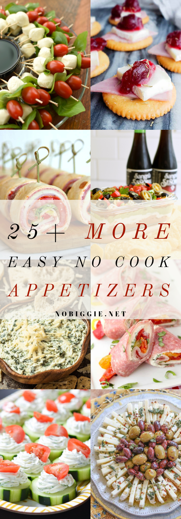 25+ MORE Easy No Cook Appetizers | NoBiggie.net
