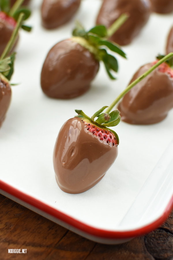 chocolate dipped strawberries | NoBiggie.net